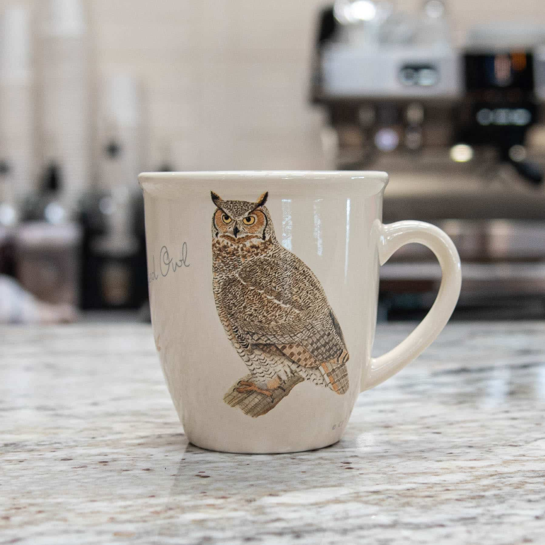 Bird Mug – Great Horned Owl